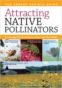 Book - 