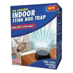 Indoor Stink Bug Trap