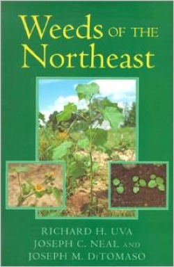 Book - Weeds of the Northeast
